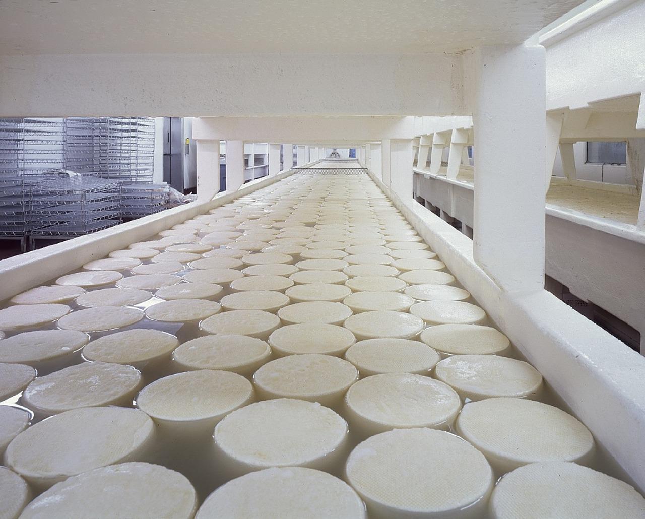 cheese-721145_1280